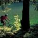 Portare le biciclette